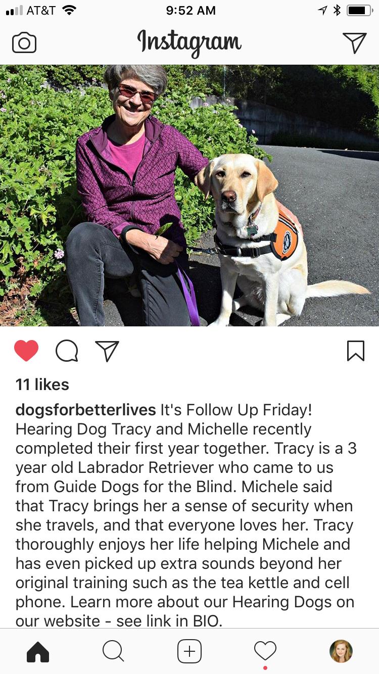Tracy, Hearing Dog