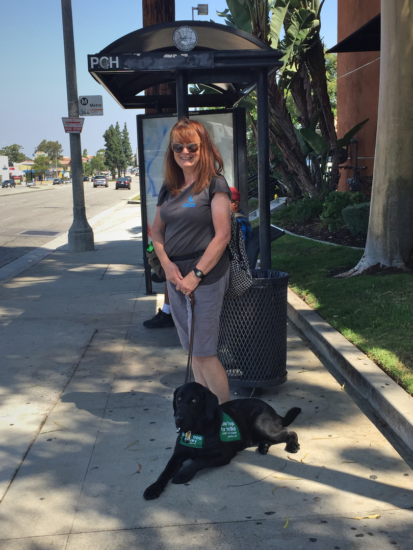 Brenda With Dash Waiting For A Bus