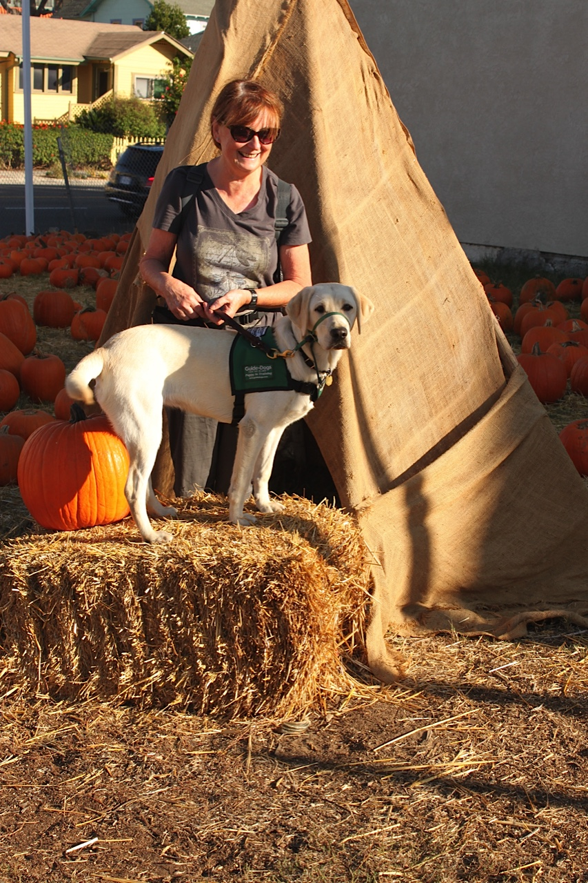 Brenda With Dreamer At The Pumpkin Patch