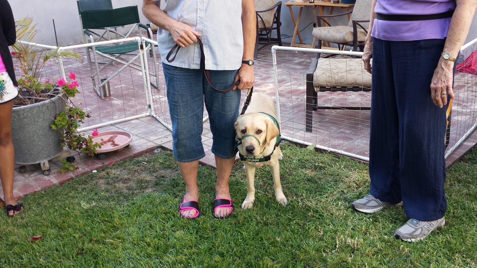 Meg with Amari 2017-07-17