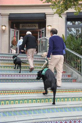 Palos Verdes Mall Social - 11/19/2010