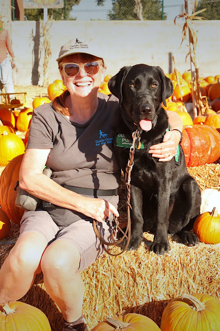 Brenda With Dash At The Pumpkin Patch, In Record Temperature