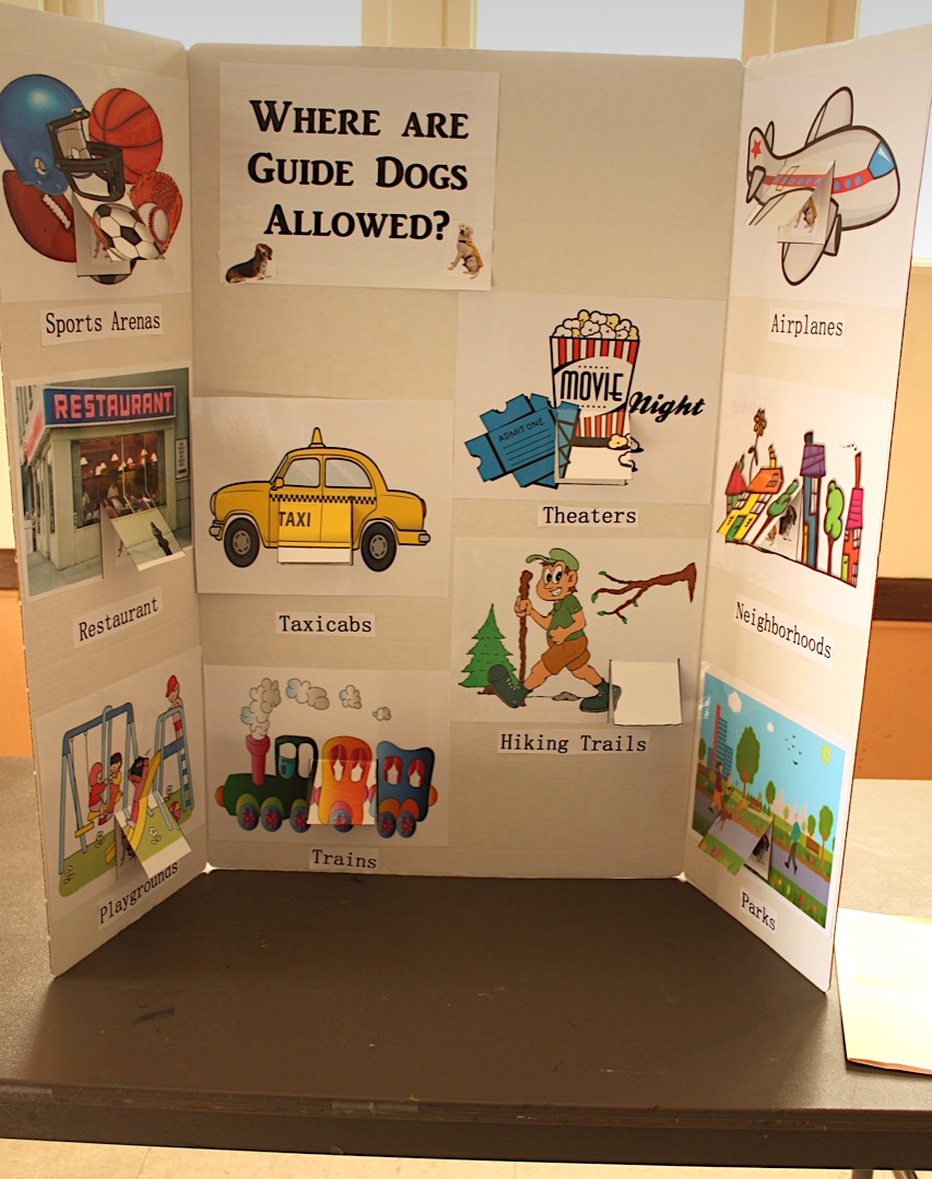 Guide dog display by Girl Scout Evelyn