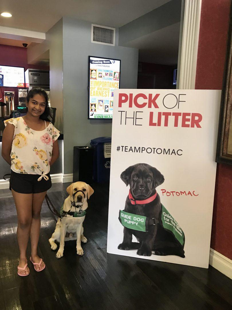 Avanthi with Dover at Pick of the Litter at the Royal