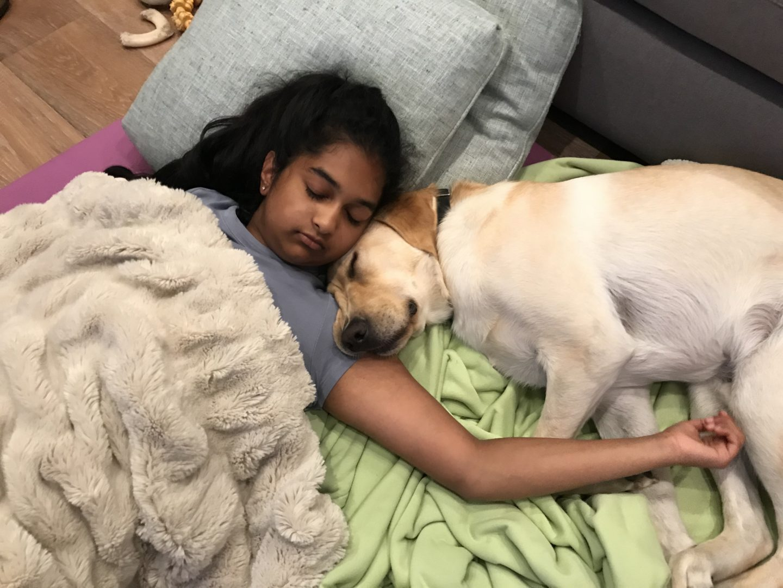 Avanthi with Dover sleeping