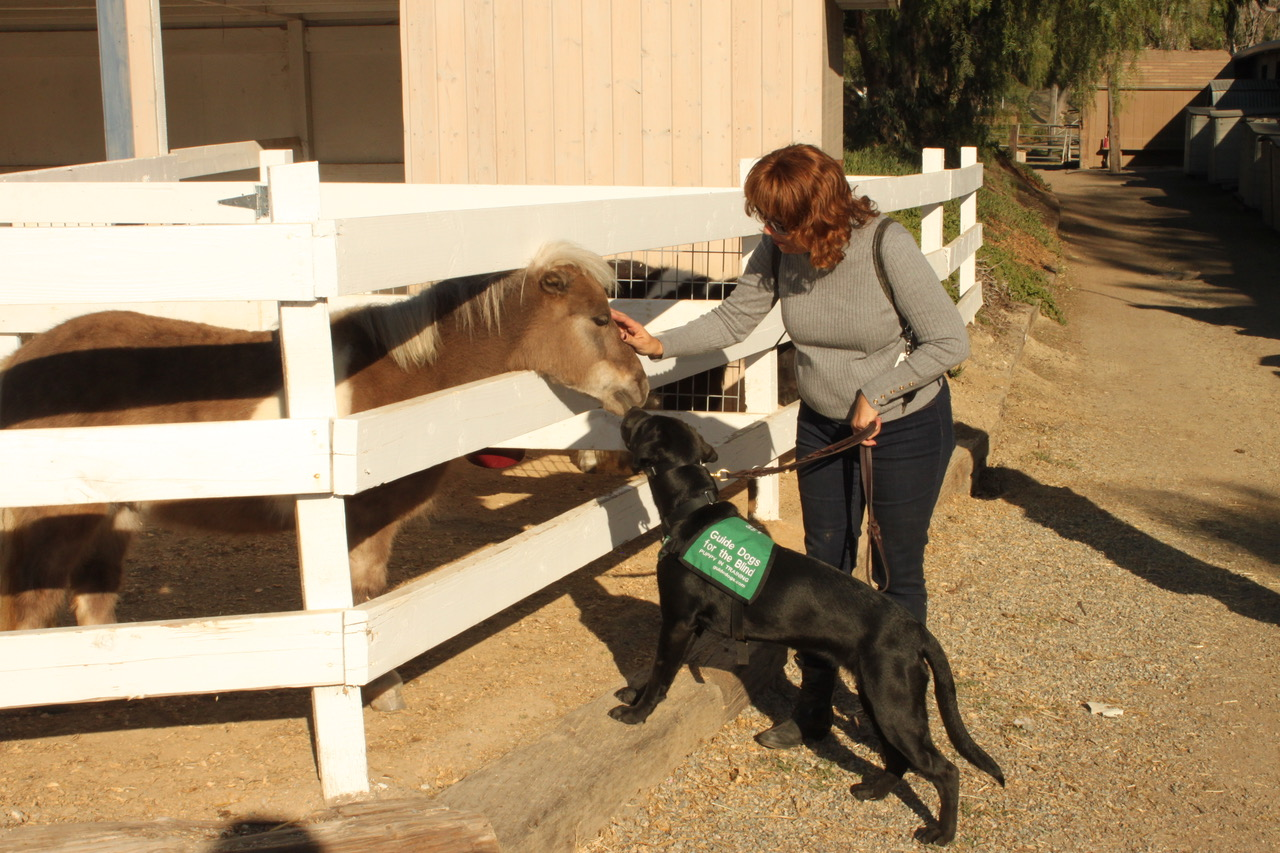 Karen with Jess and pony