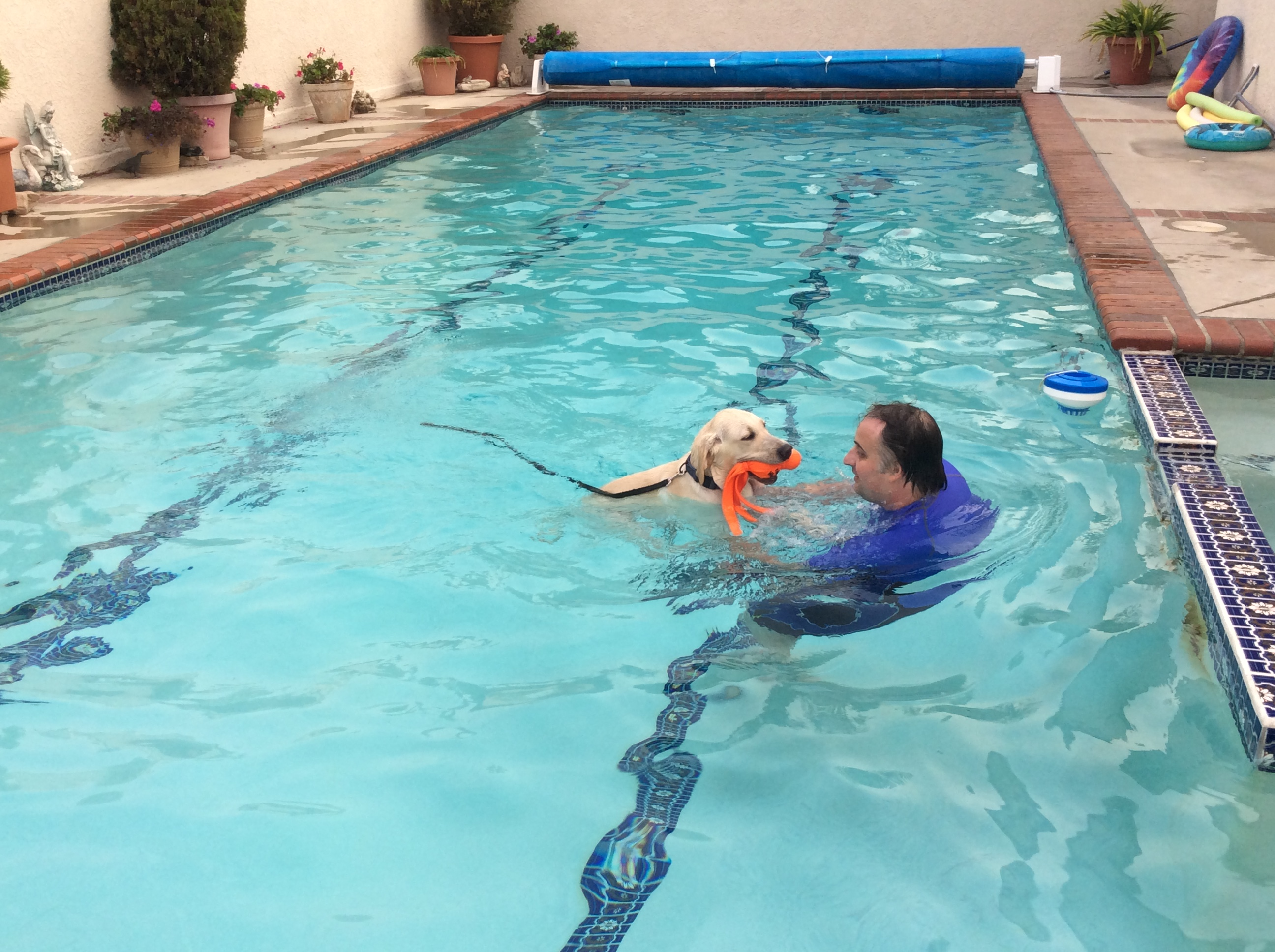 Tim with Milo in the pool