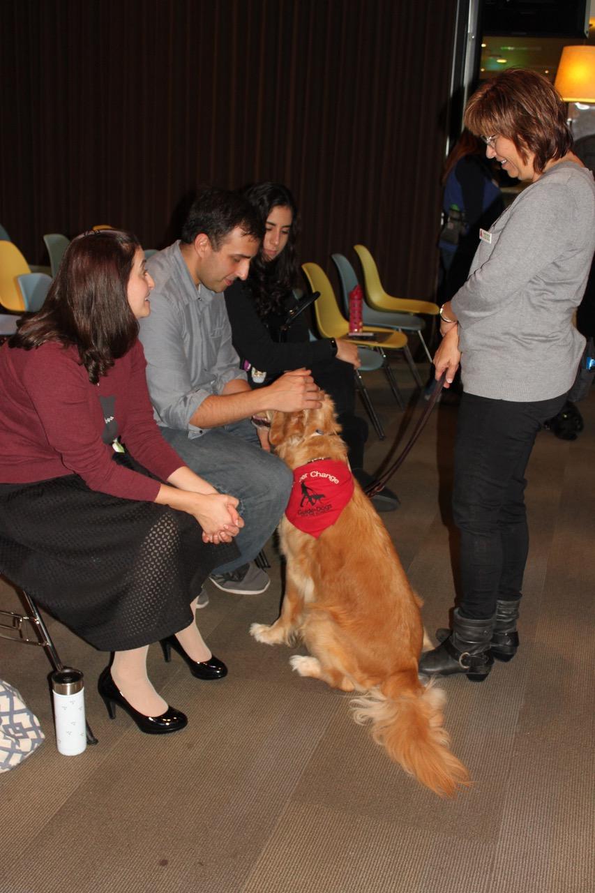 Presentation: petting
