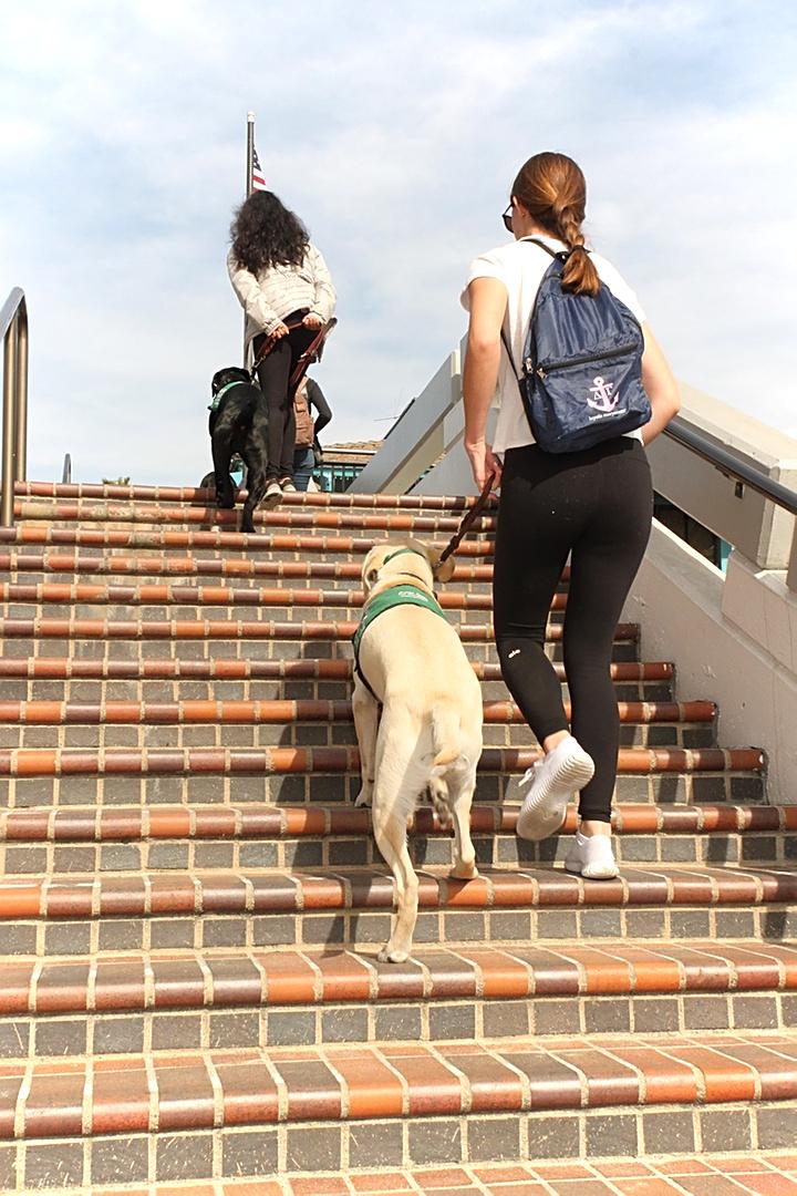 Training: stairs