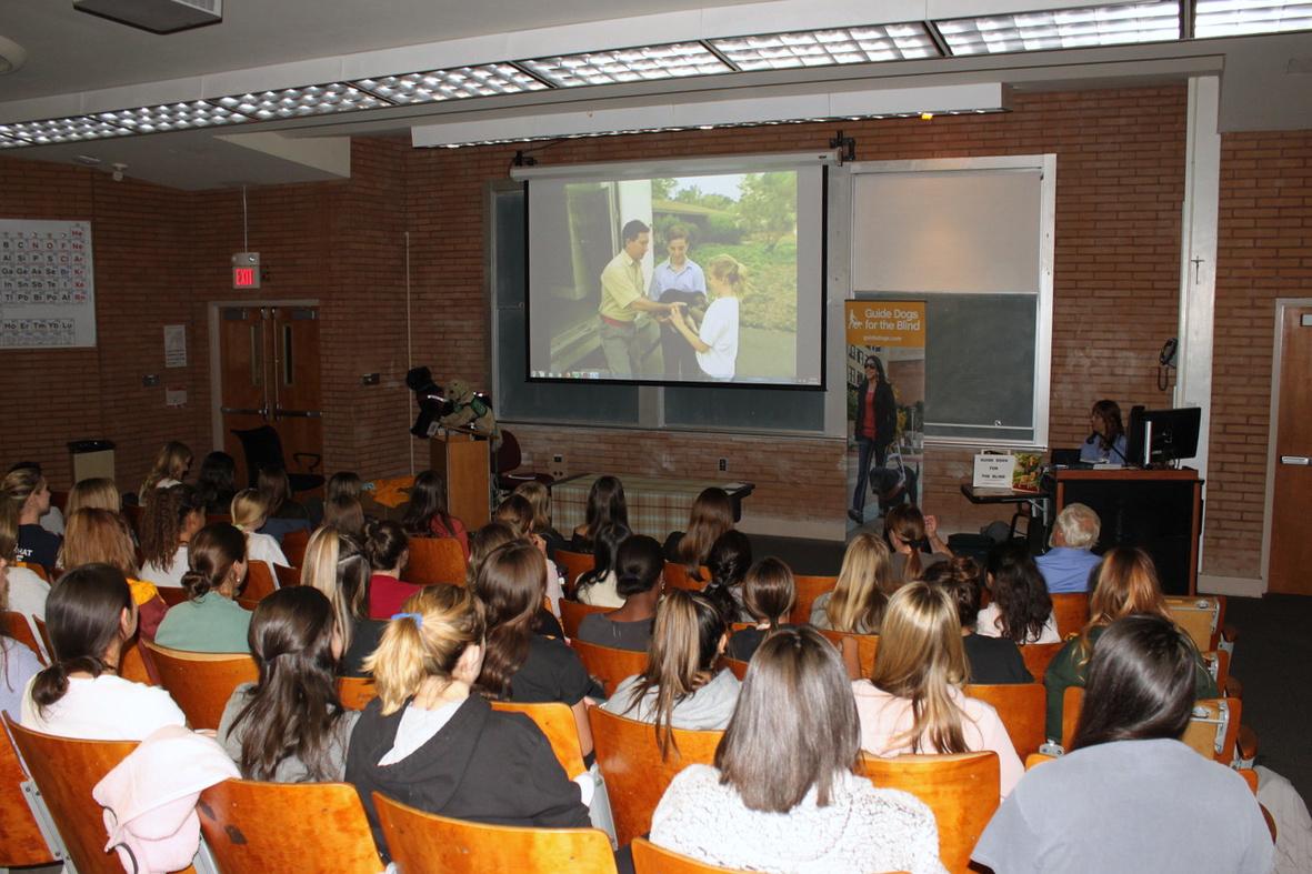Presentation: video