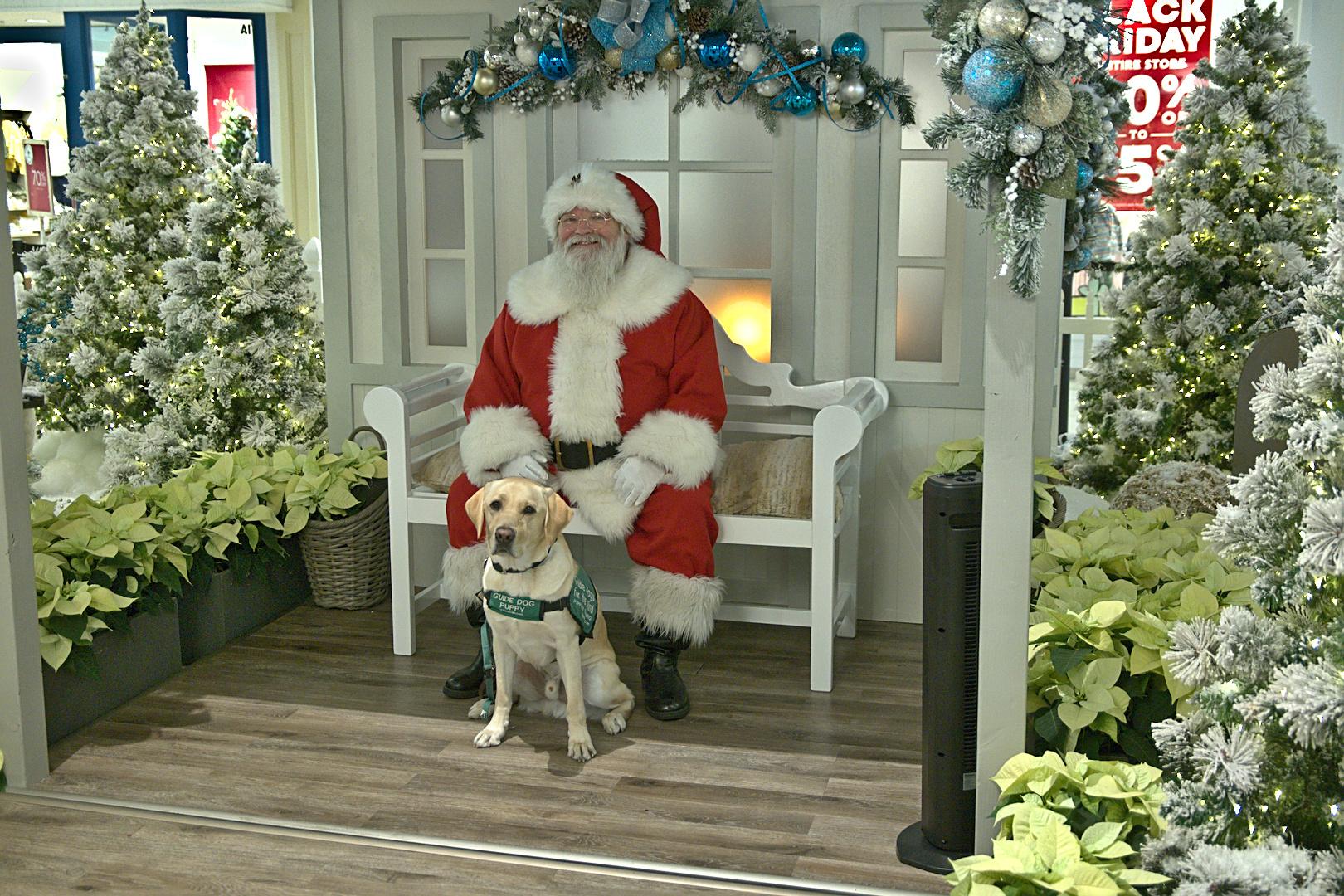 Dover and Santa