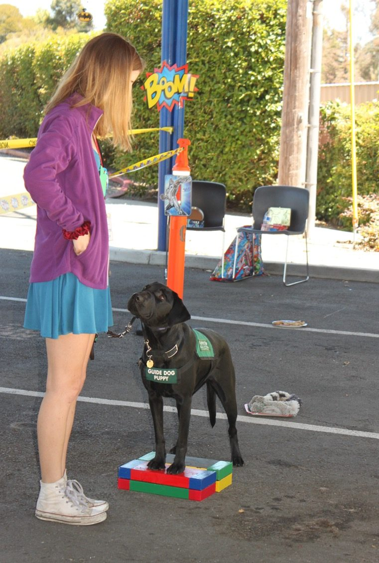 Katherine With Reese Testing Paw Pad At Fun Day 2016