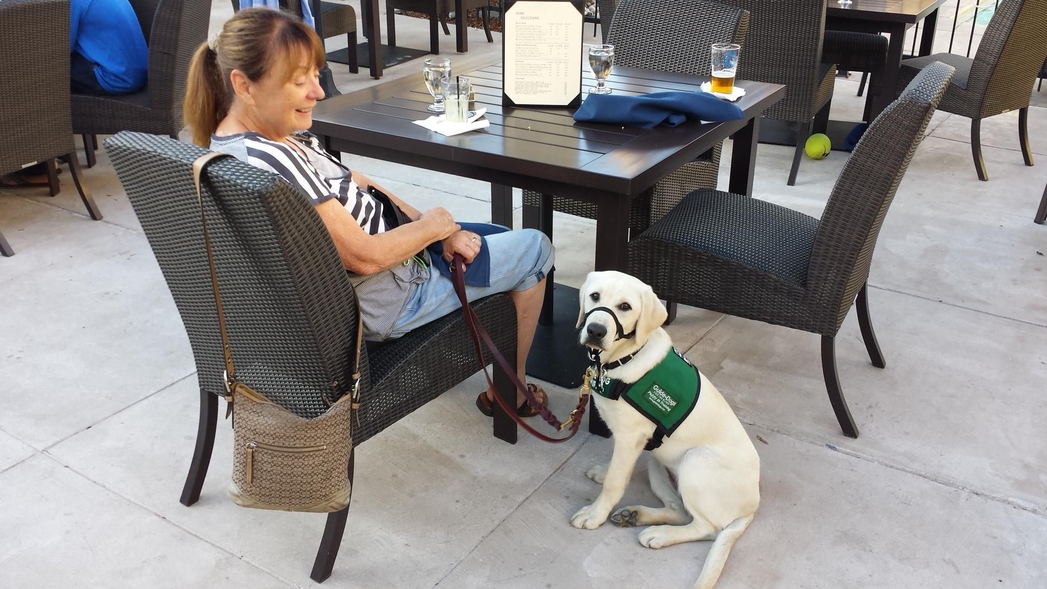 Brenda with Dreamer at San Rafael