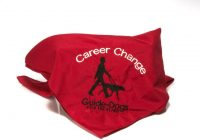 Career change scarf