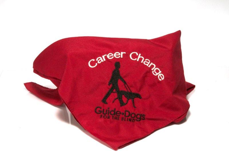 Career Change Scarf