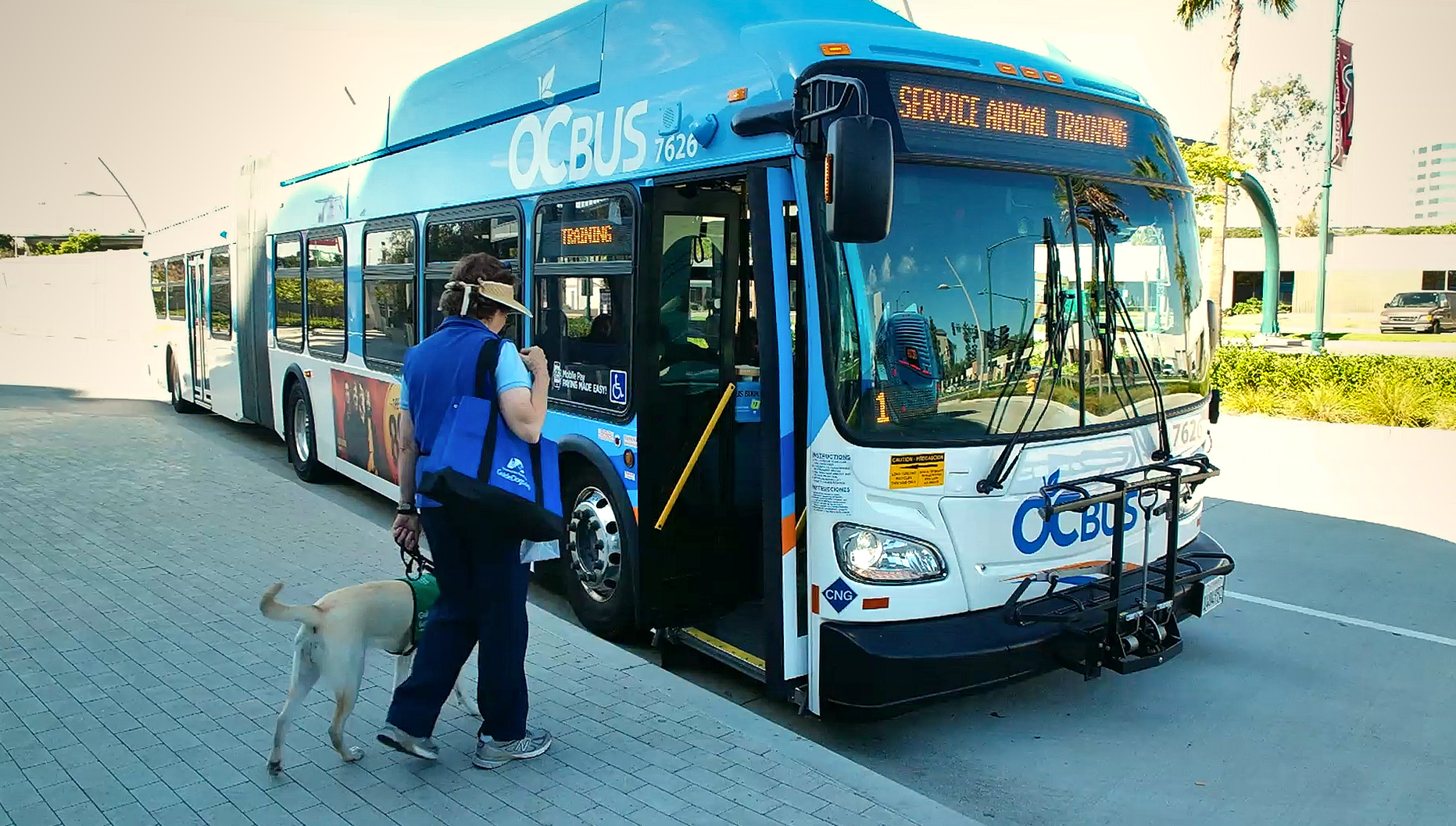 Pat with Velma boarding an OCTA bus 2017