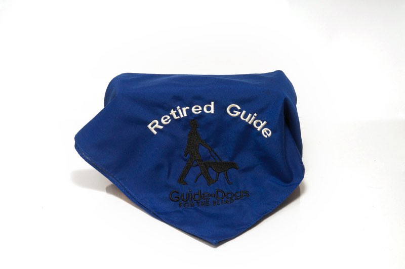 Retired Guide Scarf