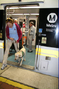 Guide Dog Travel Day - 06/08/2008
