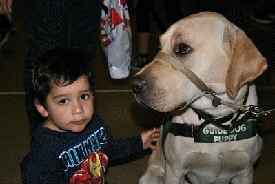 Holiday Carnival Junior Blind of America - 12/04/2010