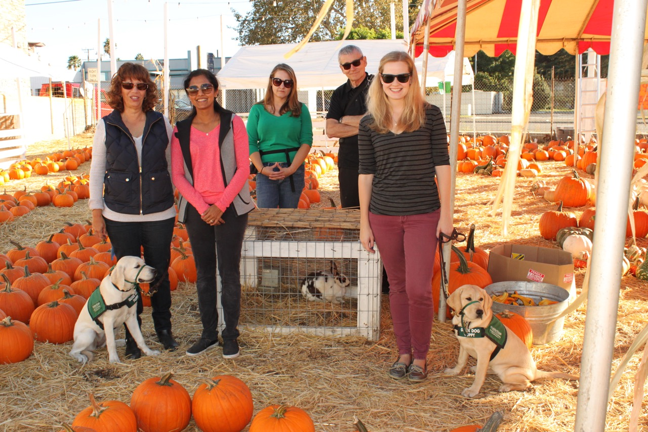Training at the pumpkin patch