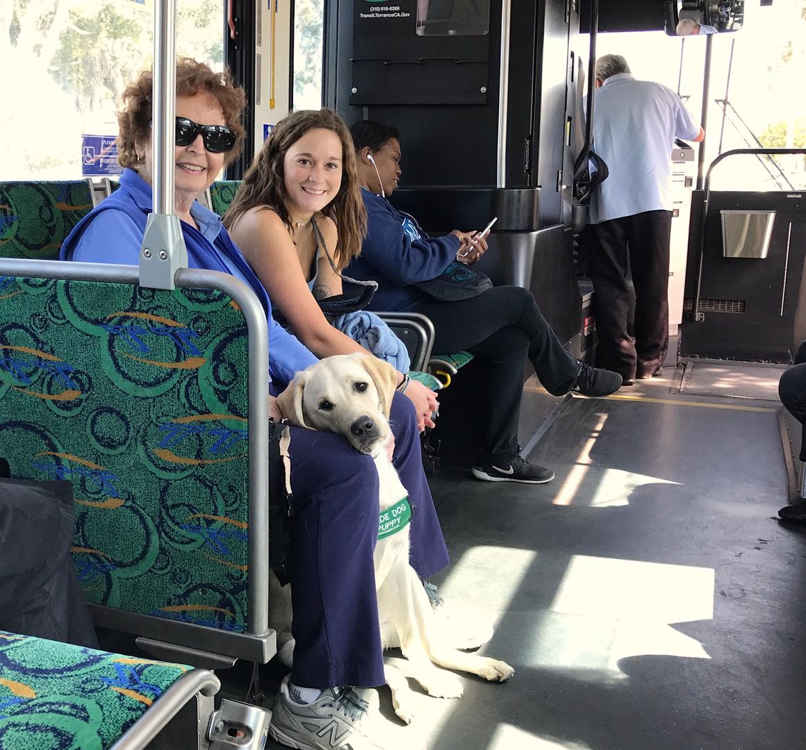 Training: Bus Ride, 20170516