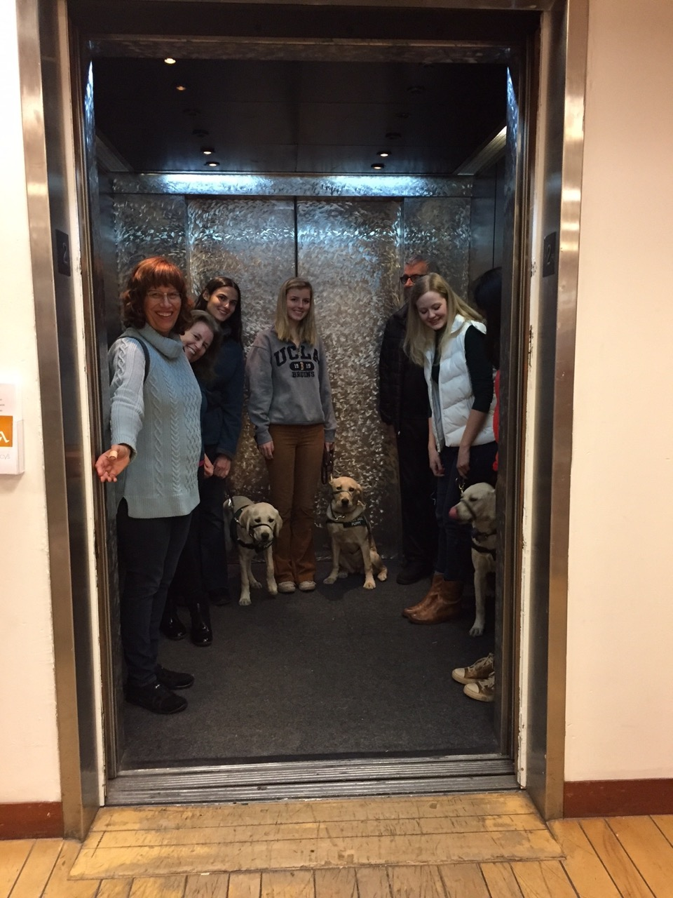 Training in an elevator 2016