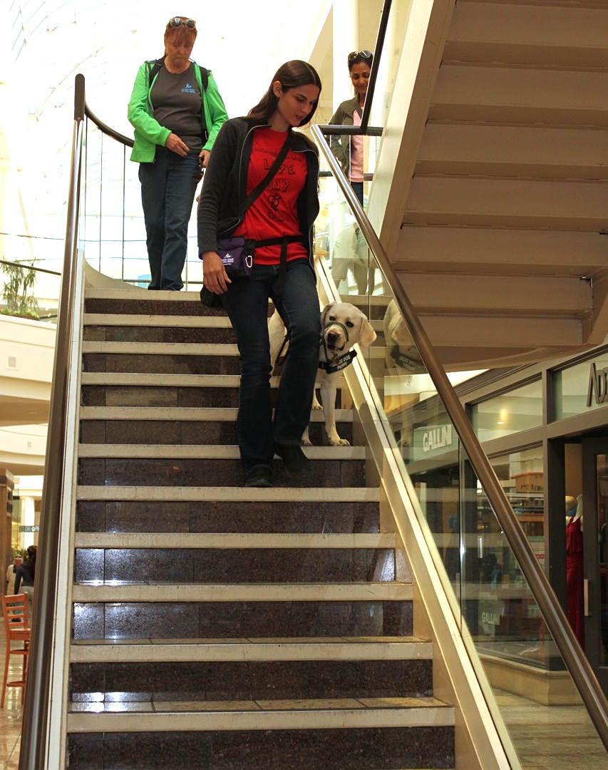 Training: stairs in mall, 20170516