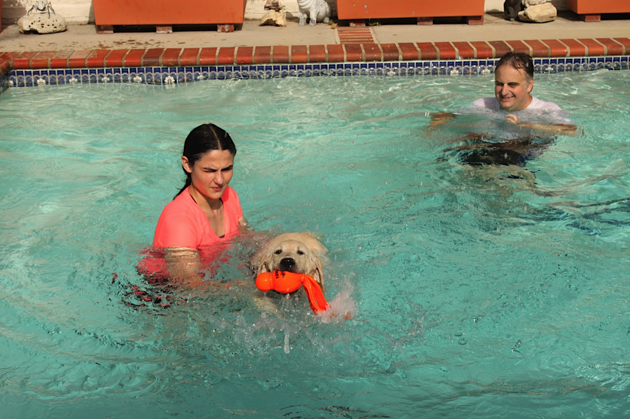 Elizabeth with Milo and Tim in the pool