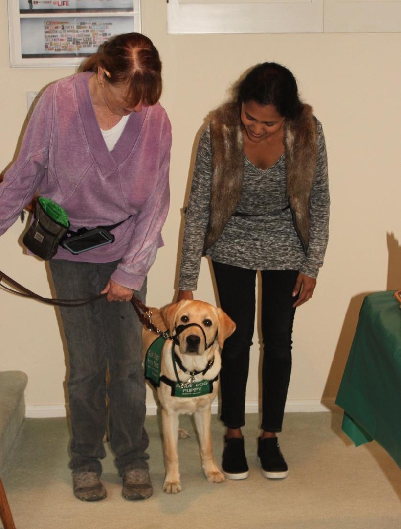 Brenda and Daya evaluating Dover