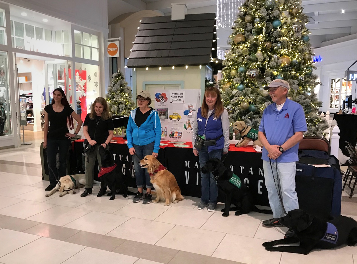 Group: fundraiser in mall