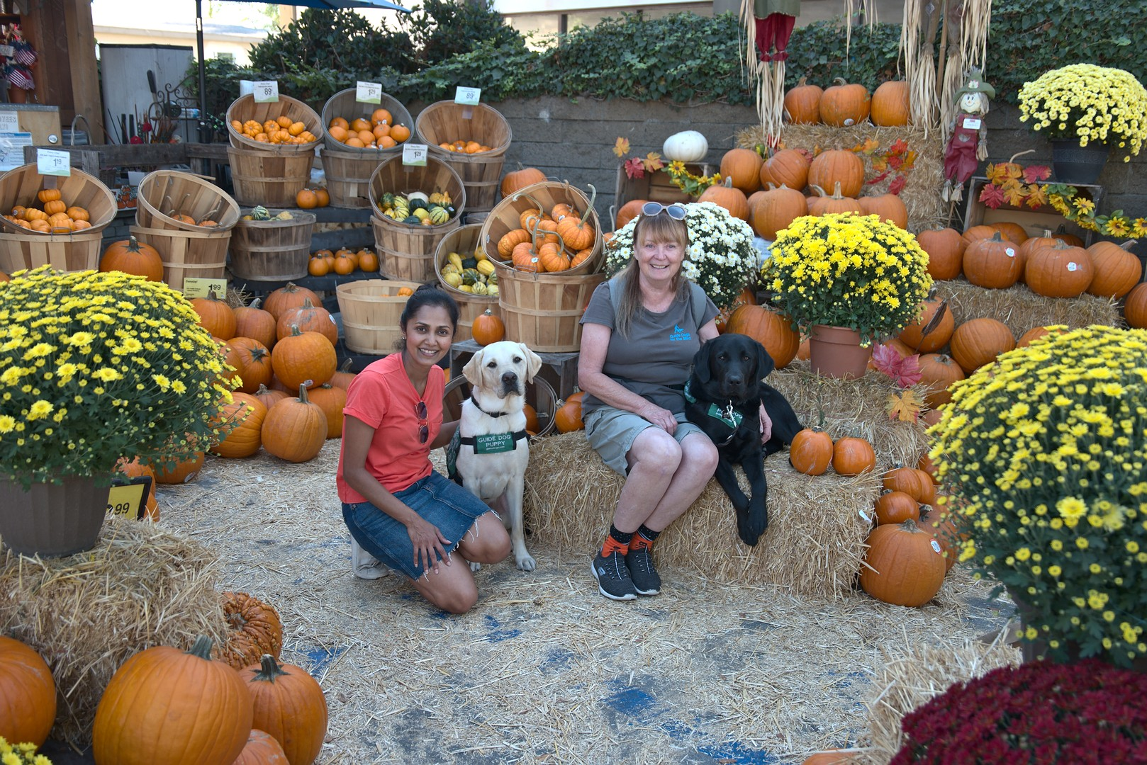 Daya with Kazuki, Brenda with Macklin, at the Pumpkin Patch